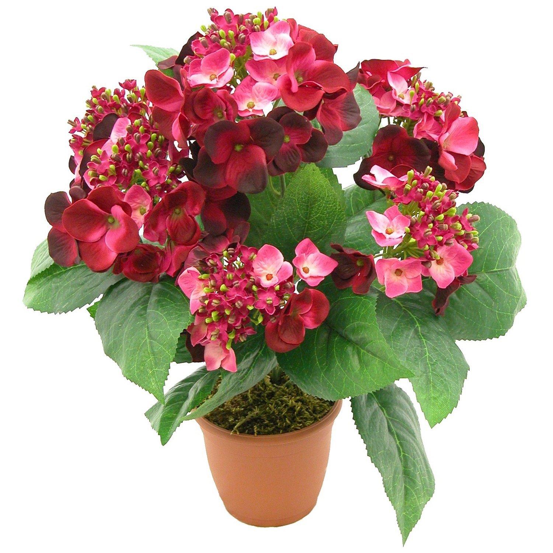 Купить стабилизированные цветы в туле доставка цветов мурманск розарио