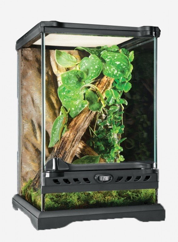 Hagen Террариум EXO TERRA Nano из силикатного стекла, 20х20х30см ...