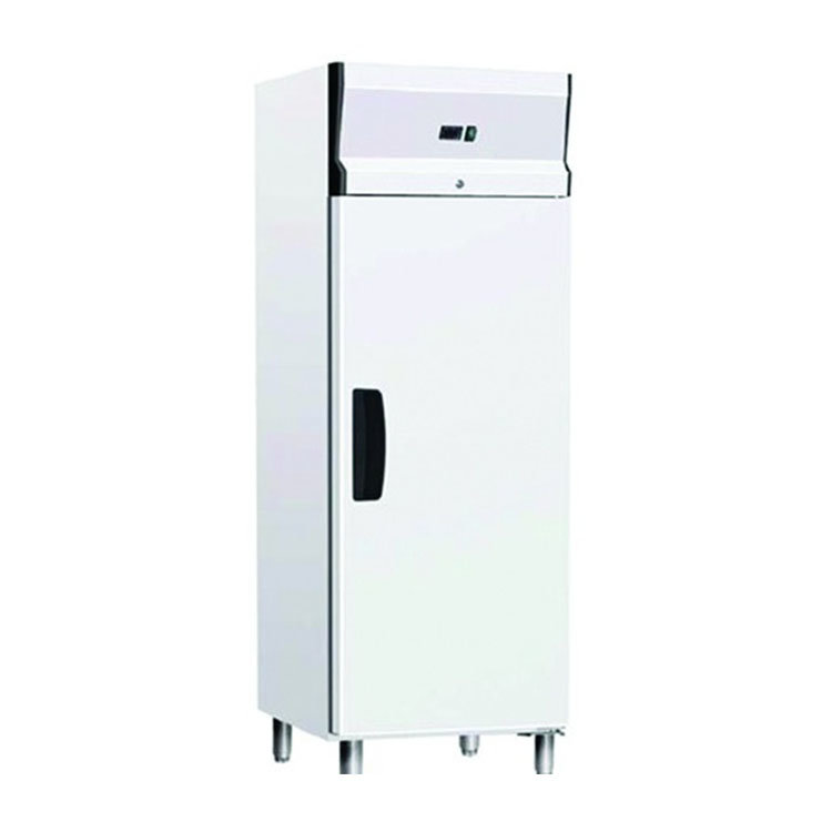 Шкаф морозильный Gastrorag GN600 BTB
