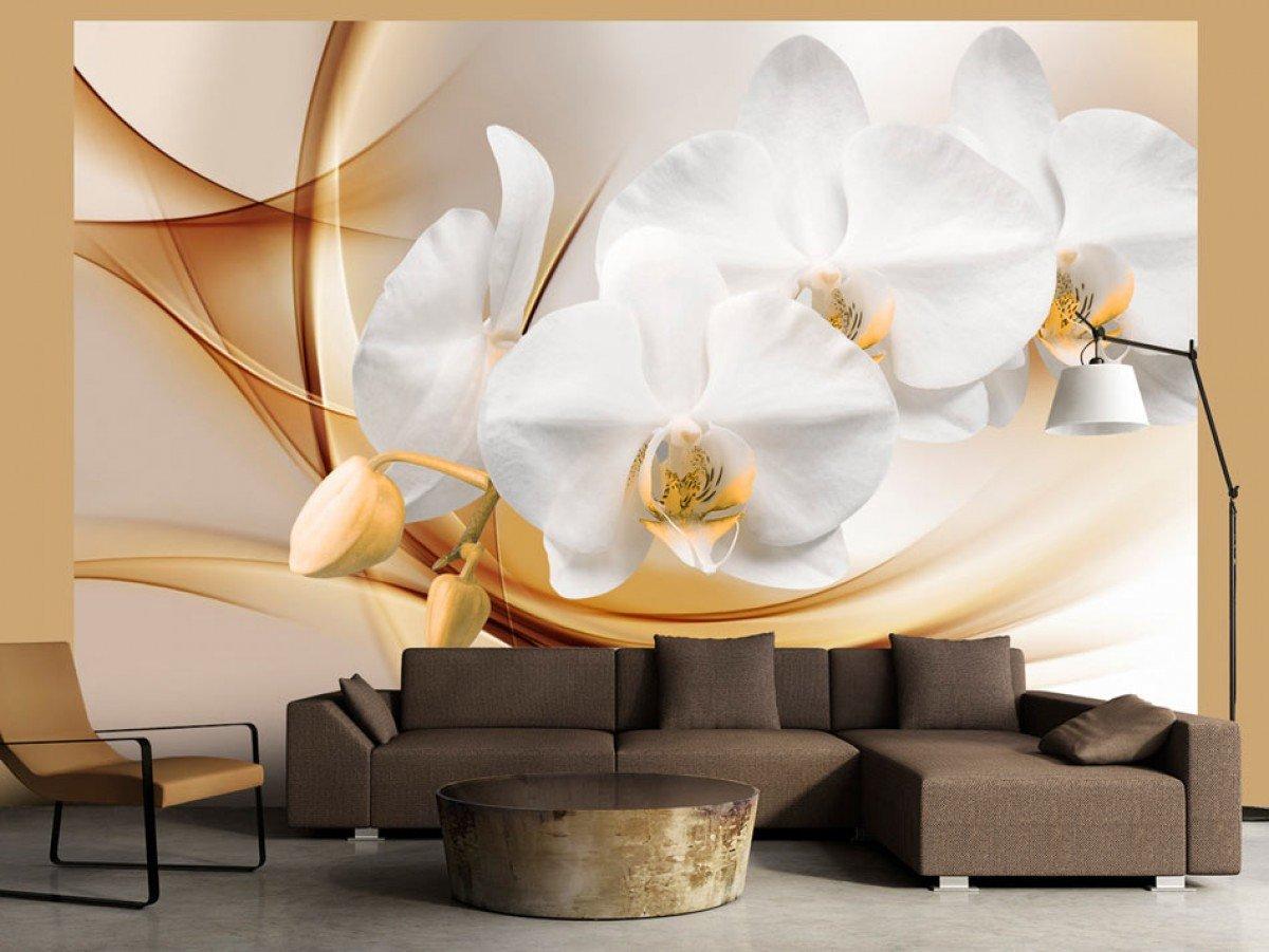 Фотообои «Цветущая орхидея», 150x105 см