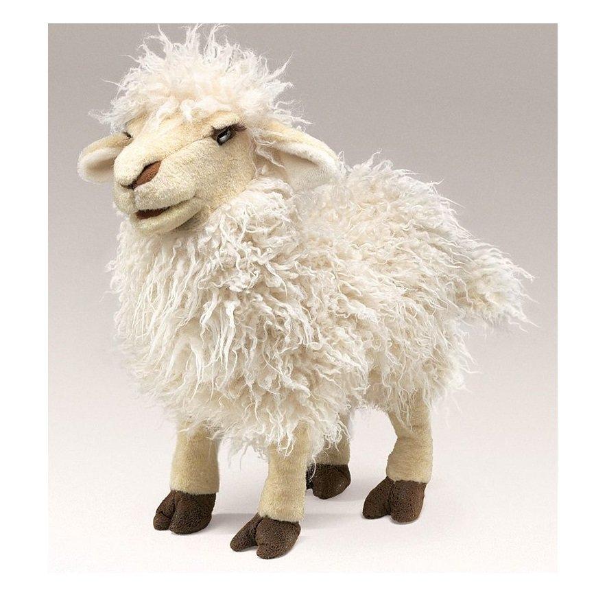 Вот овца картинки