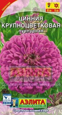"Семена. Цинния ""Крупноцветковая пурпурная"", однолетник"