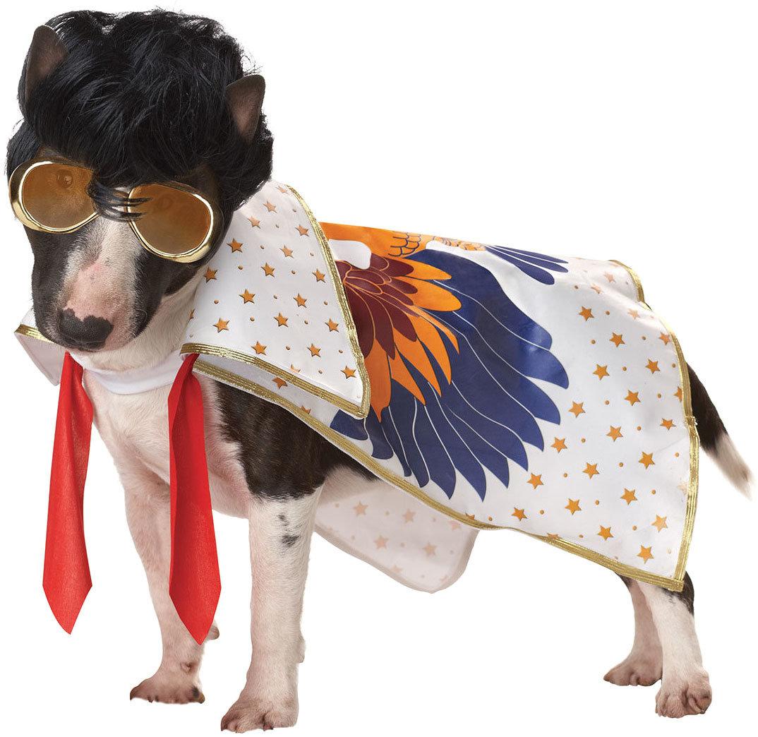 Костюм для собак California Costumes Костюм для собаки Король рок-н-ролла, S