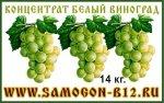 Виноград белый концентрат 14 кг