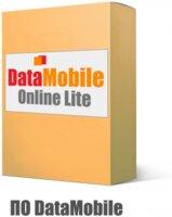 Программное обеспечение DMv8.0 Online Lite Win
