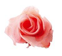 Имбирь маринованный розовый в/у 1кг