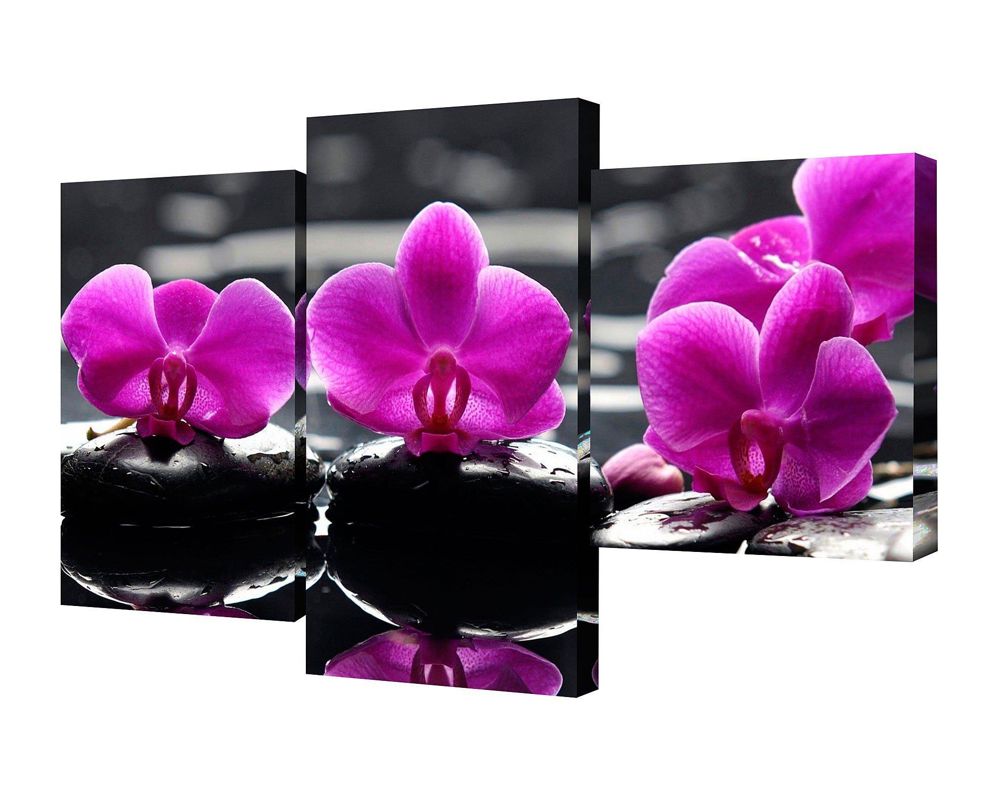 Модульные картины Top Light Цветы TL-MM1038