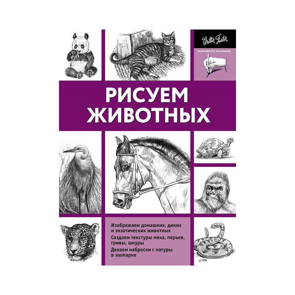 "Чудова А. (ред.) ""Рисуем животных"""