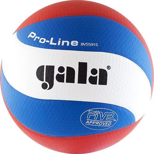 Мяч волейбольный Gala Pro-Line 10 FIVB (BV5591S) - Gala