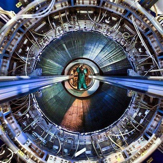 Нейросети перешли с фотографий котиков на субъядерную физику