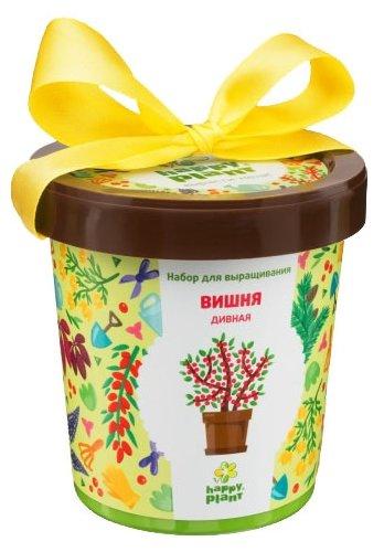 Набор для выращивания Happy Plant Горшок подарочный Вишня дивная