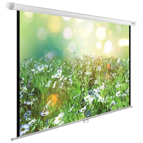 Рулонный матовый белый экран cactus WallExpert CS-PSWE-200x200-WT