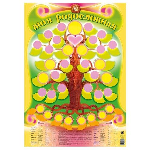 Купить Плакат Маленький гений Моя родословная 9031, Обучающие плакаты
