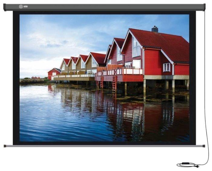 Рулонный матовый белый экран cactus Professional Motoscreen CS-PSPM-124x221