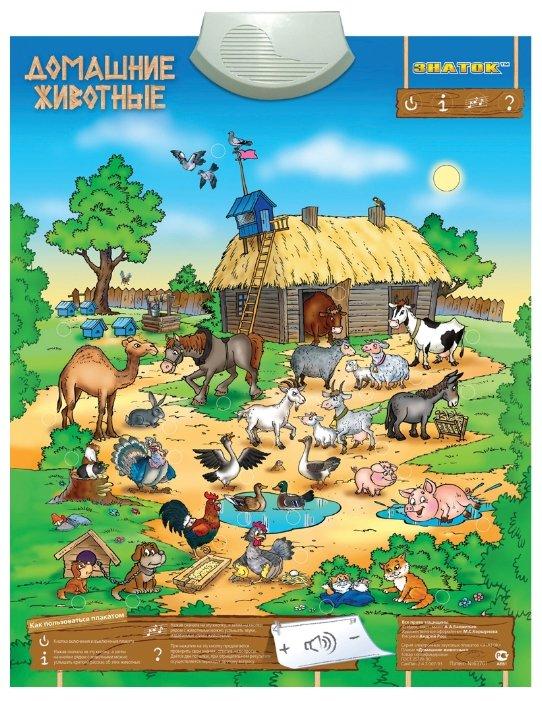 Электронный плакат Знаток Домашние животные 70084 — купить по выгодной цене на Яндекс.Маркете