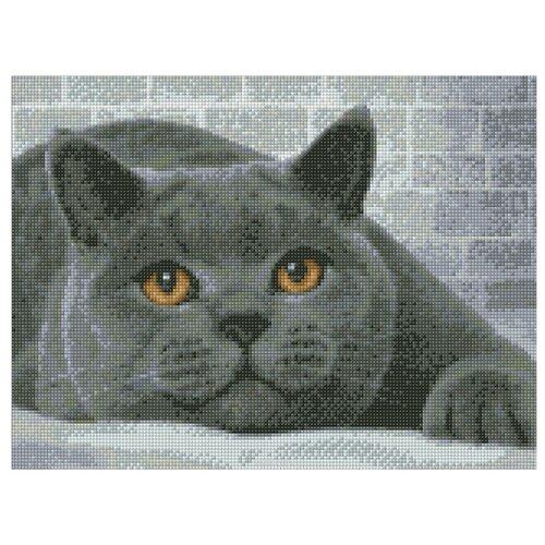 Алмазная живопись Набор алмазной вышивки Британский кот (АЖ-1463) 40х30 смАлмазная вышивка<br>