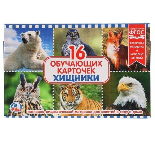 Купить Набор карточек Умка Хищники 19x12 см 16 шт., Дидактические карточки