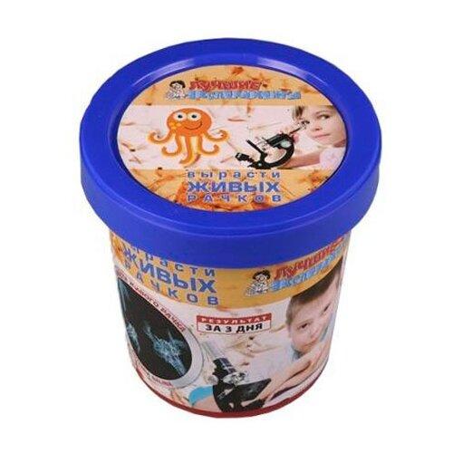 Купить Набор Qiddycome Вырасти живого рачка (Х039), Наборы для исследований