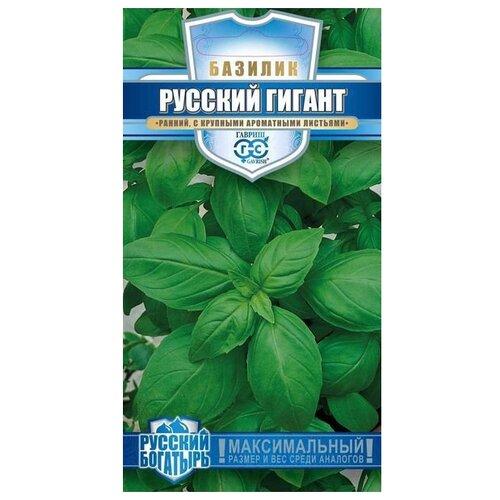 Фото - Семена Гавриш Русский богатырь Базилик Русский гигант, зеленый 0,3 г, 10 уп. семена гавриш базилик зеленый