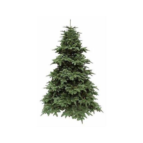 Фото - Triumph Tree Ель Нормандия темно-зеленая, 260 см ель триумф норд 425 см зеленая 73078 triumph tree