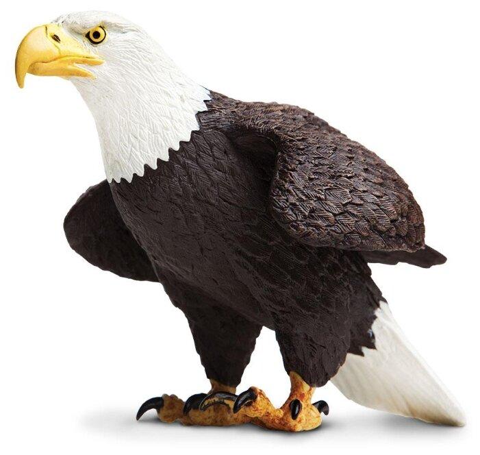 Фигурка Safari Ltd Белоголовый орлан 251029