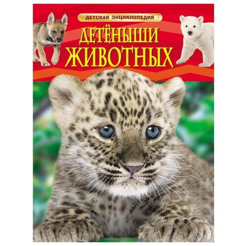 Купить Детская энциклопедия. Детеныши животных, РОСМЭН, Познавательная литература