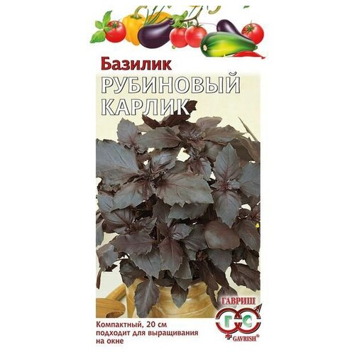 Фото - Семена Гавриш Базилик Рубиновый карлик 0,1 г, 10 уп. семена гавриш базилик зеленый