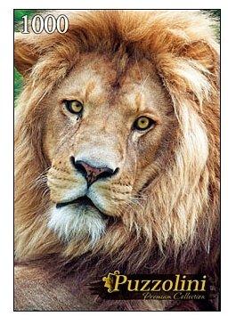 Пазл Рыжий кот Puzzolini Большой лев (GIPZ1000-7709), 1000 дет.