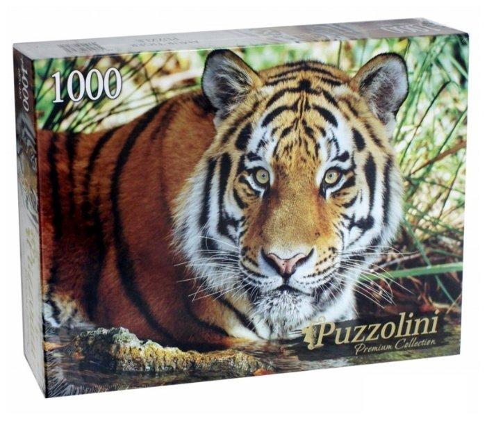 Пазл Рыжий кот Puzzolini Амурский тигр (GIPZ1000-7707), 1000 дет.