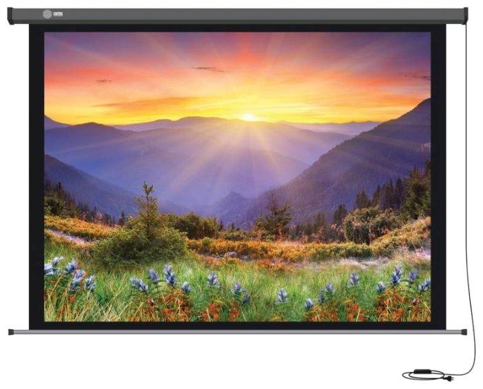 Рулонный матовый белый экран cactus Professional Motoscreen CS-PSPM-149x265