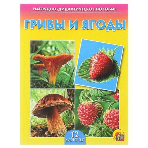 Набор карточек Рыжий кот Грибы и ягоды 16.5x21.5 см 12 шт. ягоды 12 красочных карточек