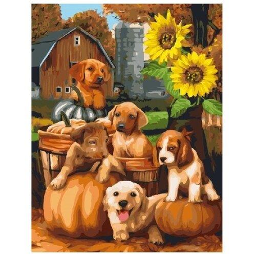 "Color Kit Картина по номерам ""Богатый урожай"" 40х50 см (CG831)"
