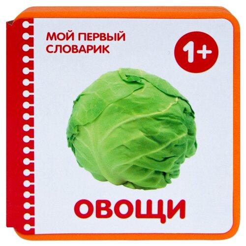 Купить Краснушкина Е.Е. Мой первый словарик. Овощи , Мозаика-Синтез, Книги для малышей
