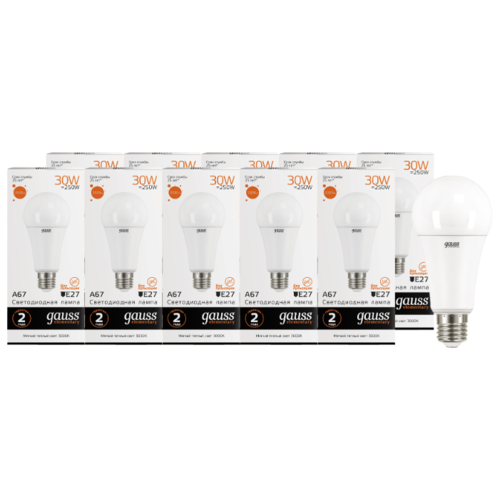 Упаковка светодиодных ламп 10 шт gauss 73219, E27, A67, 30Вт упаковка светодиодных ламп 10 шт gauss 73229 e27 a67 30вт