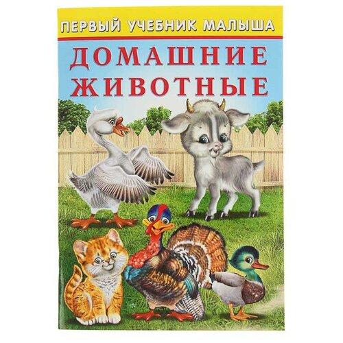 Зверькова Ю. Первый учебник малыша. Домашние животные ю м баженов бетоноведение учебник