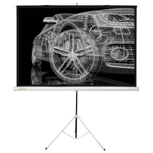 Фото - Рулонный матовый белый экран cactus Triscreen CS-PST-124x221 экран cactus triscreen cs pst 150x150 white