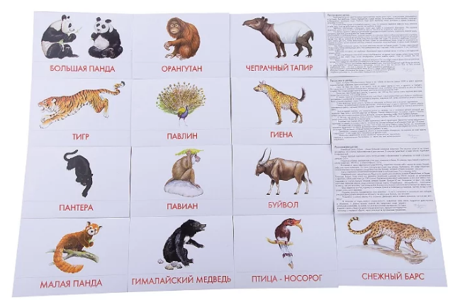 Животные евразии список и фото