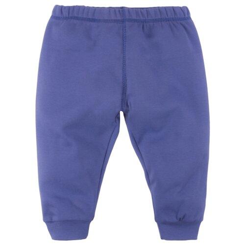 Купить Брюки Bossa Nova размер 24, синий, Брюки и шорты