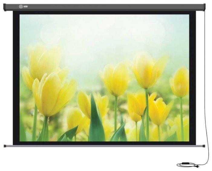 Рулонный матовый белый экран cactus Professional Motoscreen CS-PSPM-183x244