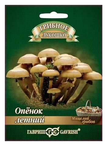 Мицелий грибов Гавриш Грибное лукошко Опенок летний на древесной палочке 12 шт.