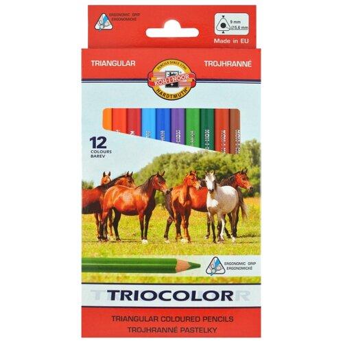 Купить KOH-I-NOOR Карандаши цветные Triocolor, 12 цветов (3142/12), Цветные карандаши