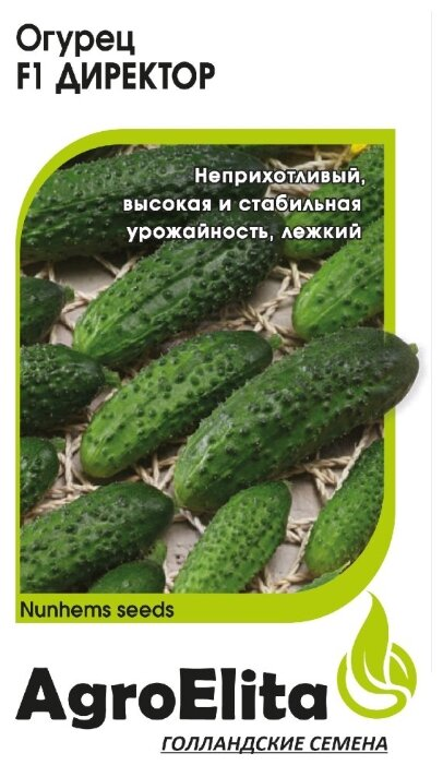 "Семена. Огурец ""Директор F1"", партенокарпический (5 штук)"