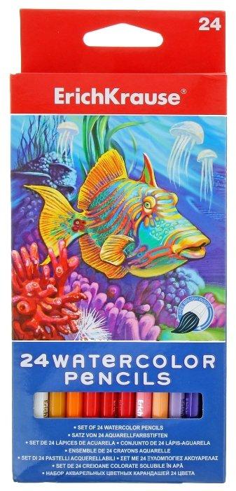 ErichKrause Акварельные карандаши 24 цвета (32882EK)