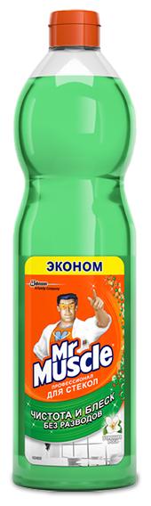 Жидкость Mr. Muscle Профессионал для стекол Утренняя роса Эконом