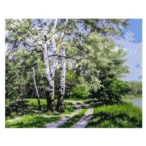 Белоснежка Картина по номерам Белая берёза 40х50 см (371-AB)