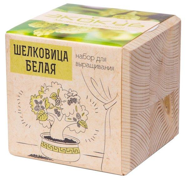 Набор для выращивания Эйфорд Экокуб Шелковица Белая ECB-01-16