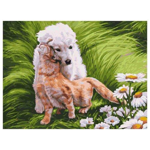 Купить Белоснежка Картина по номерам Обожание 30х40 см (061-AS), Картины по номерам и контурам