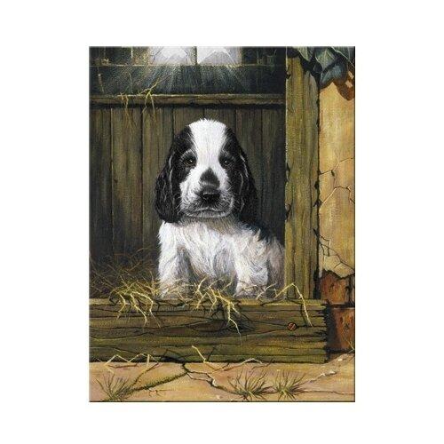 Купить Royal & Langnickel Картина по номерам Щенок спаниеля 22х29 см (PJS 67), Картины по номерам и контурам