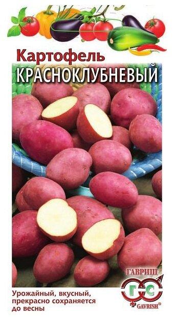 Картофель Красноклубневый 0,025 г Н16