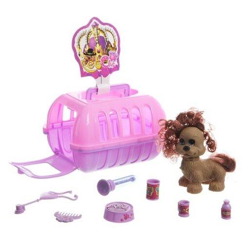 Купить Игровой набор ABC Pet Club CL2061, Игровые наборы и фигурки